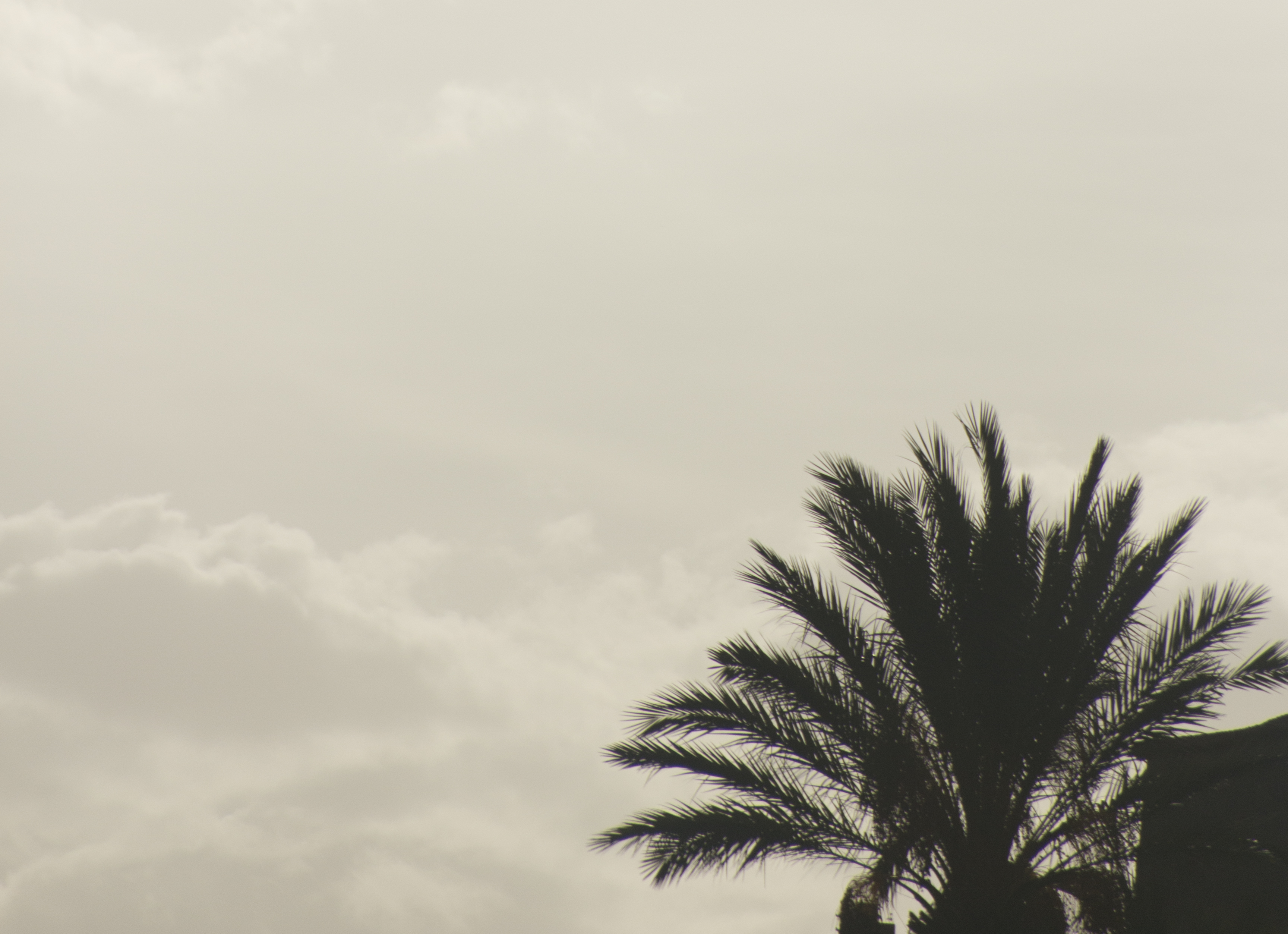 Reisverslag, Marokko